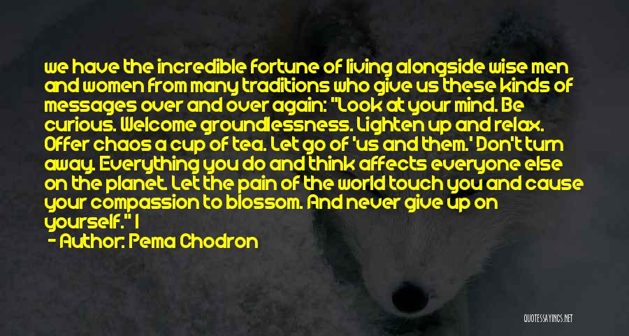 Pain Please Go Away Quotes By Pema Chodron