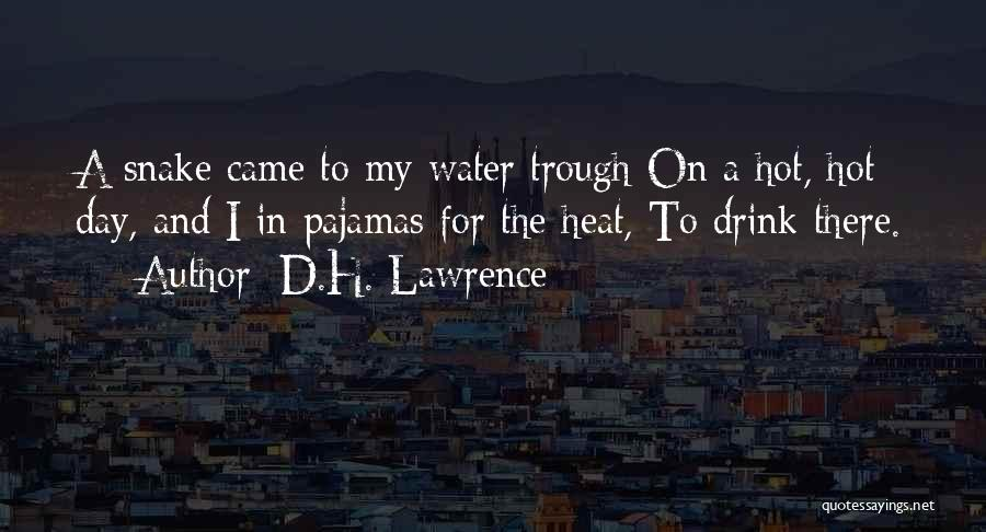 Pajamas Quotes By D.H. Lawrence