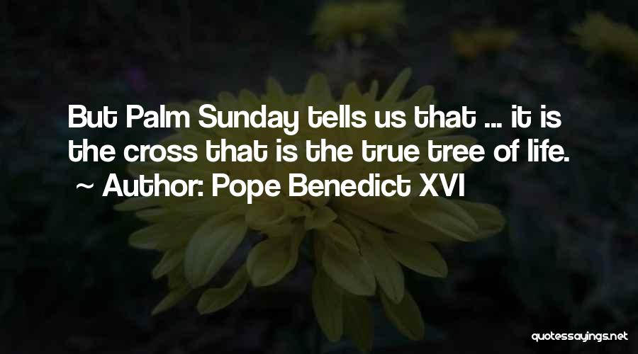 Palm Tree With Quotes By Pope Benedict XVI