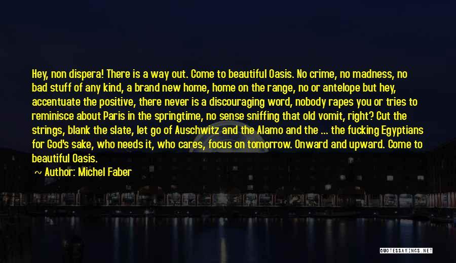 Paris In Springtime Quotes By Michel Faber