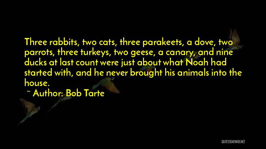 Parrots Quotes By Bob Tarte