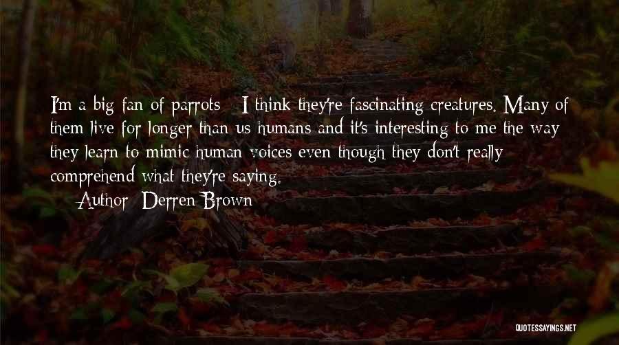 Parrots Quotes By Derren Brown