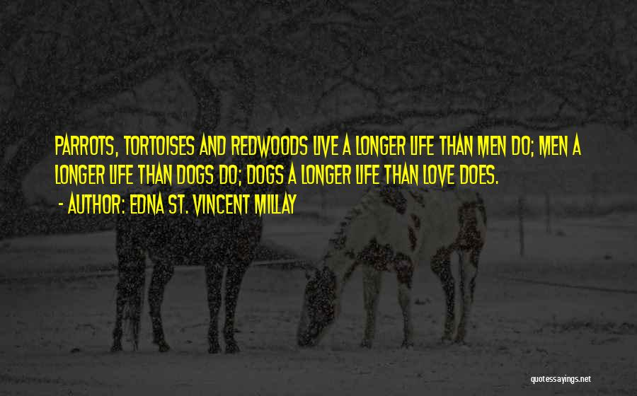 Parrots Quotes By Edna St. Vincent Millay