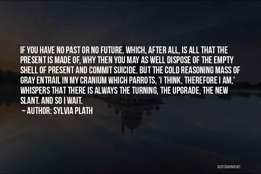 Parrots Quotes By Sylvia Plath