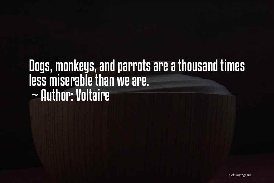 Parrots Quotes By Voltaire