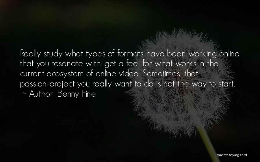Passion Quotes By Benny Fine