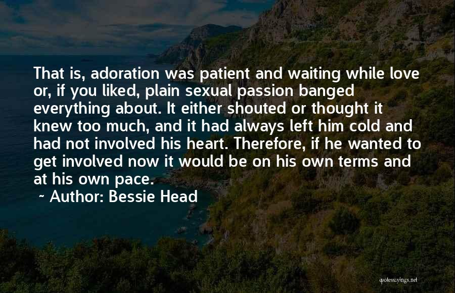 Passion Quotes By Bessie Head