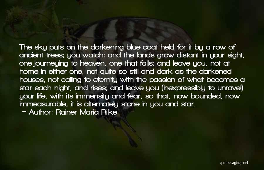 Passion Quotes By Rainer Maria Rilke
