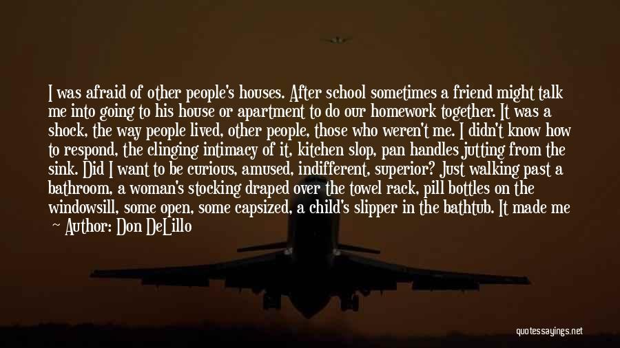 Past School Life Quotes By Don DeLillo