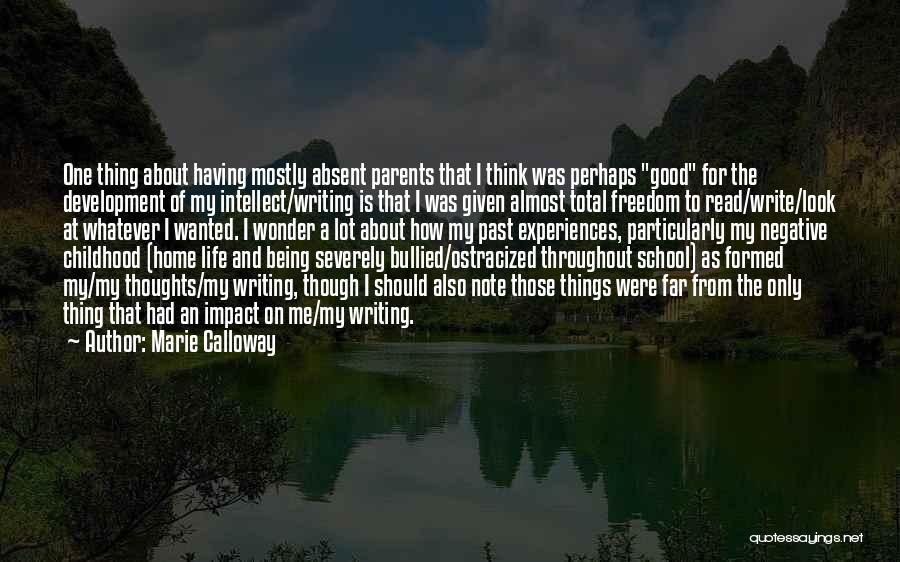 Past School Life Quotes By Marie Calloway