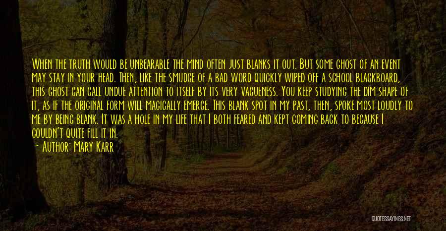 Past School Life Quotes By Mary Karr