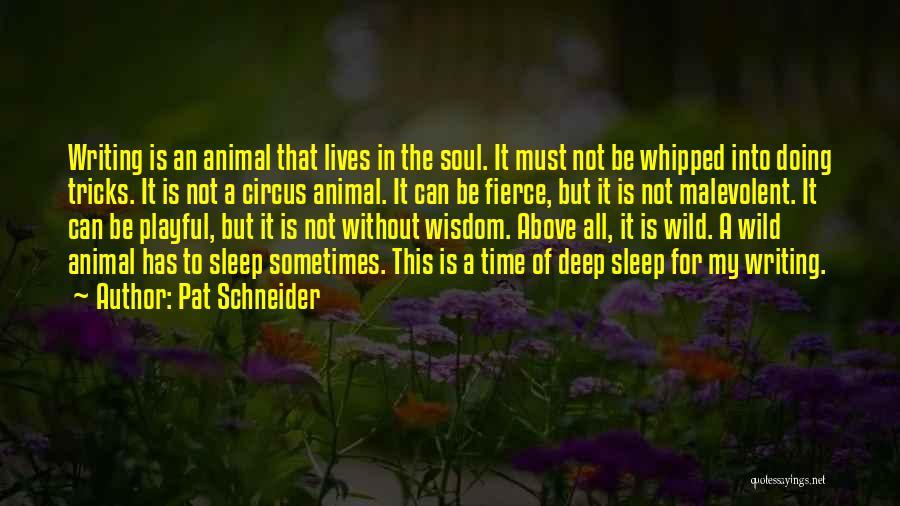 Pat Schneider Quotes 1146405