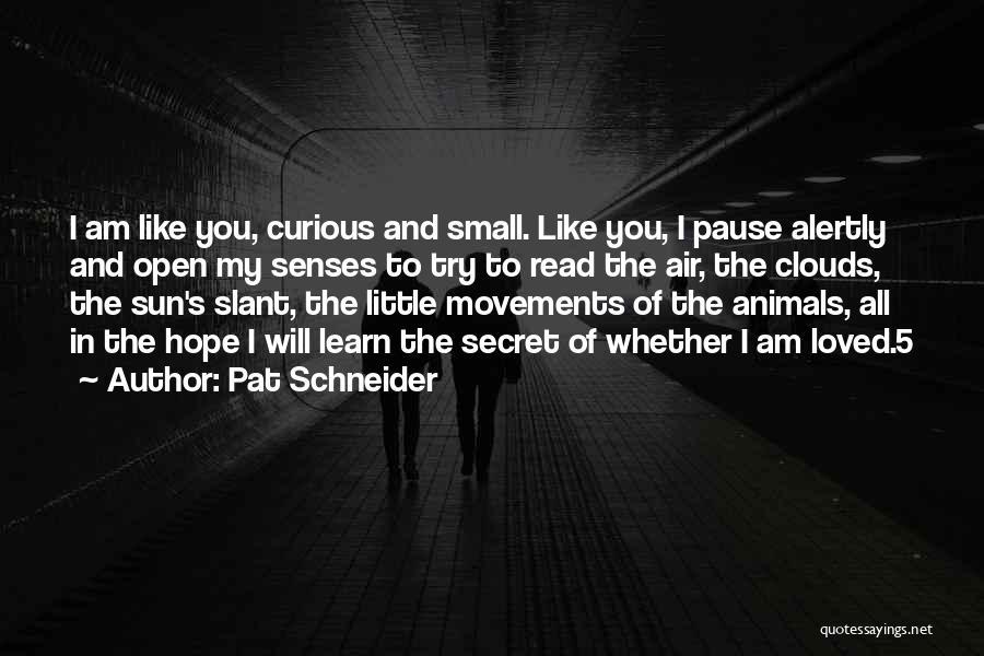 Pat Schneider Quotes 1719638