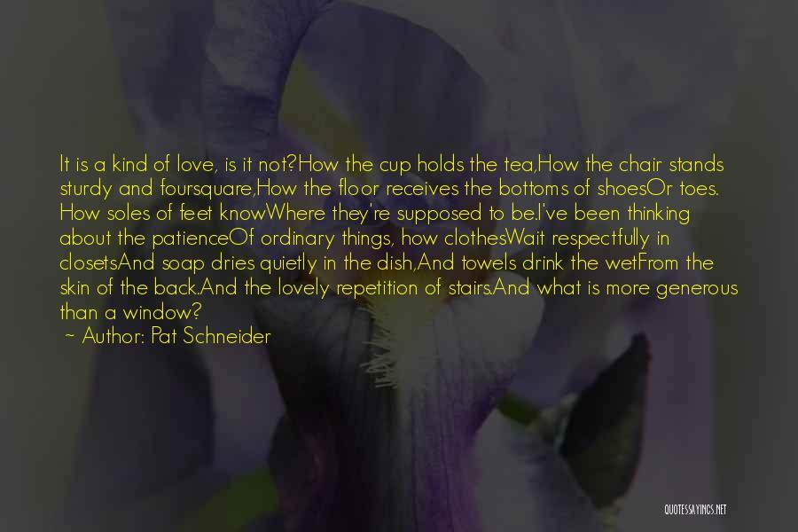 Pat Schneider Quotes 1768125