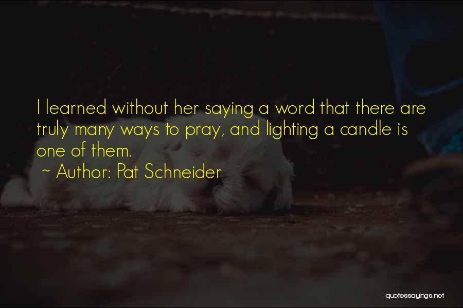 Pat Schneider Quotes 483647