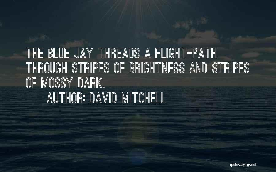 Path Quotes By David Mitchell