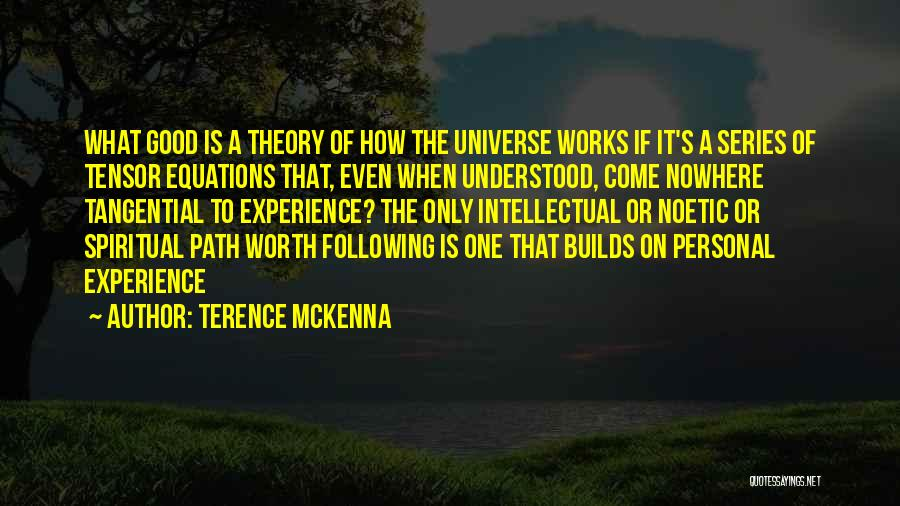 Path To Nowhere Quotes By Terence McKenna