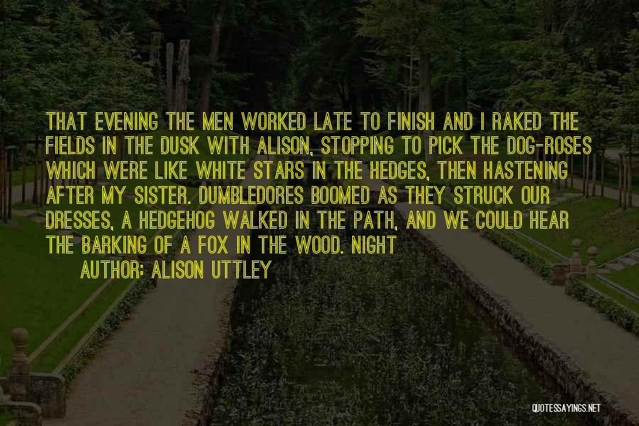 Path Walked Quotes By Alison Uttley