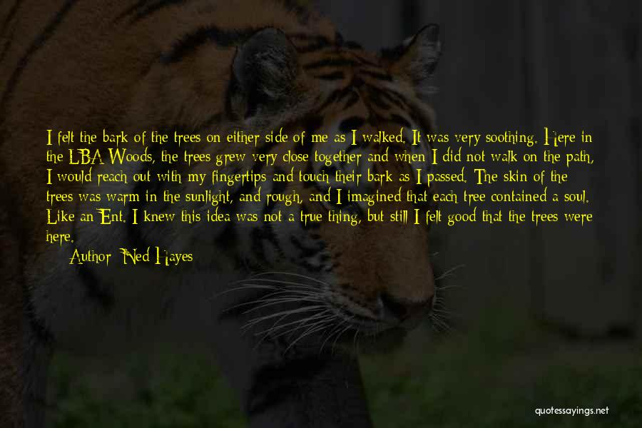 Path Walked Quotes By Ned Hayes