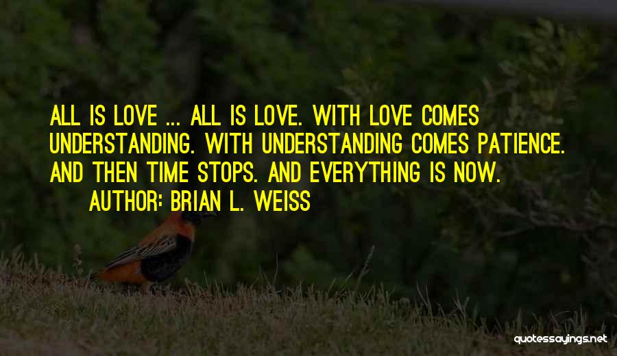 Patience And Love Quotes By Brian L. Weiss