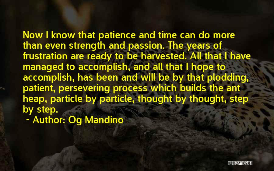 Patience And Quotes By Og Mandino