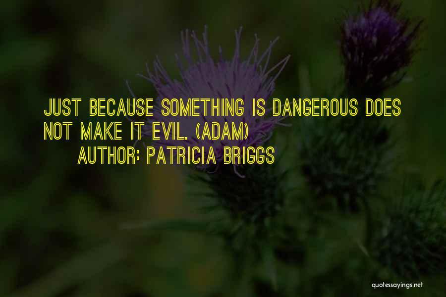 Patricia Briggs Quotes 1658876