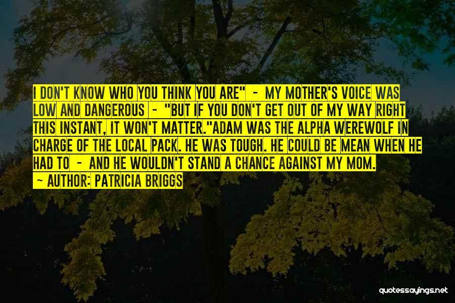 Patricia Briggs Quotes 1903992