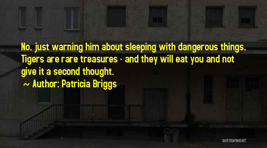 Patricia Briggs Quotes 377990