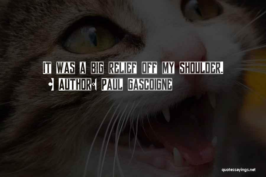 Paul Gascoigne Quotes 2225658