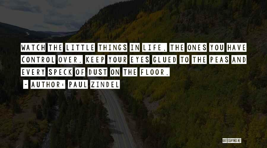 Paul Zindel Quotes 2127157