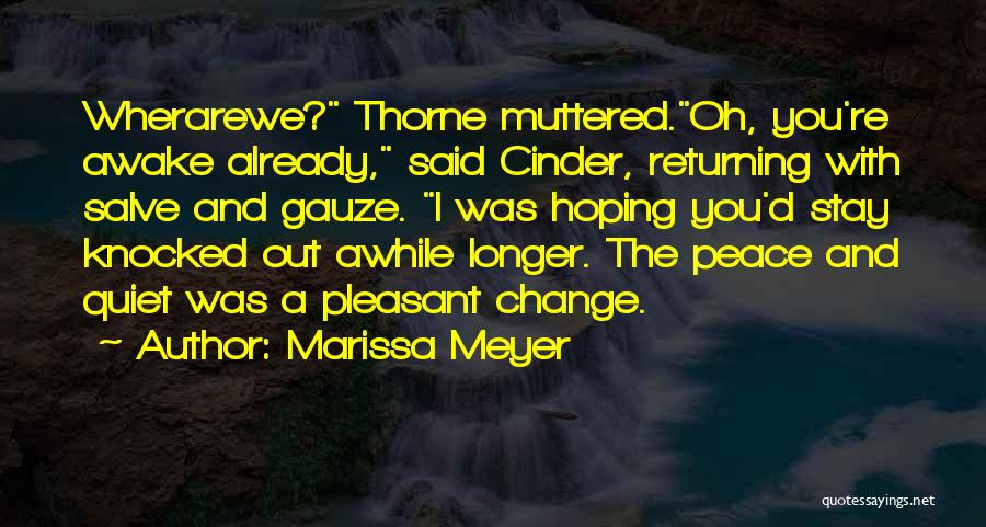 Peace N Quiet Quotes By Marissa Meyer
