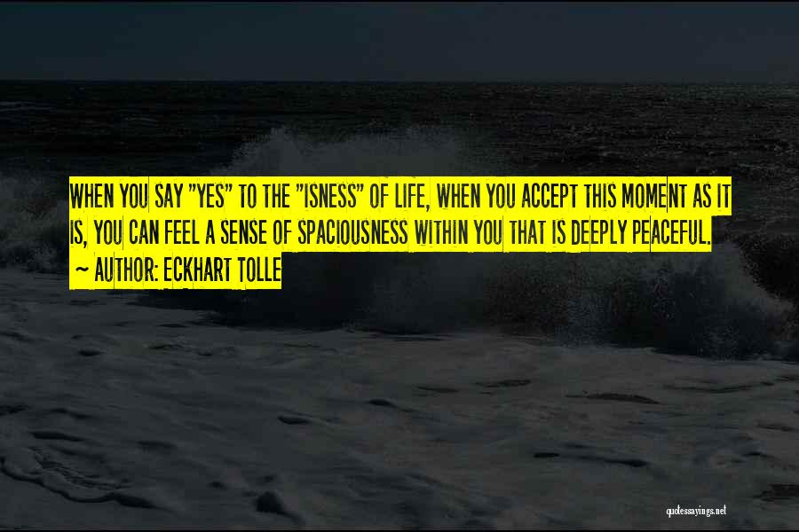 Peaceful Moments Quotes By Eckhart Tolle