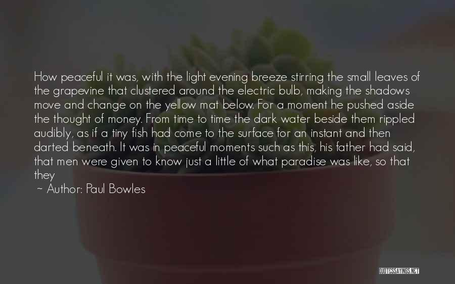 Peaceful Moments Quotes By Paul Bowles