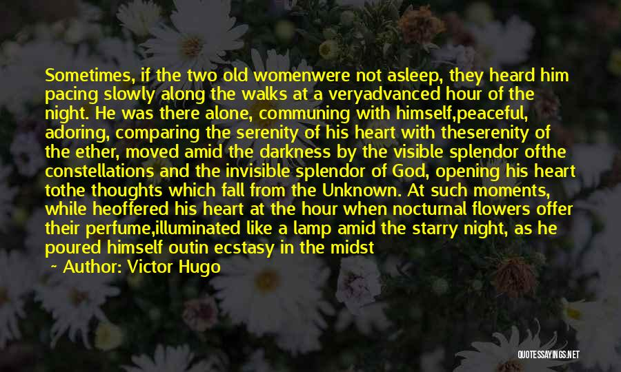 Peaceful Moments Quotes By Victor Hugo