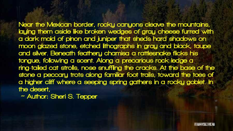 Pebbles Stone Quotes By Sheri S. Tepper