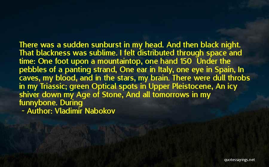 Pebbles Stone Quotes By Vladimir Nabokov