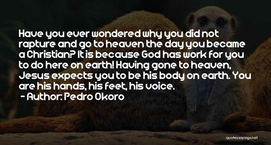 Pedro Okoro Quotes 1512974