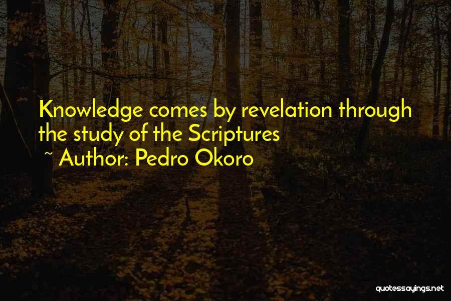 Pedro Okoro Quotes 1605181