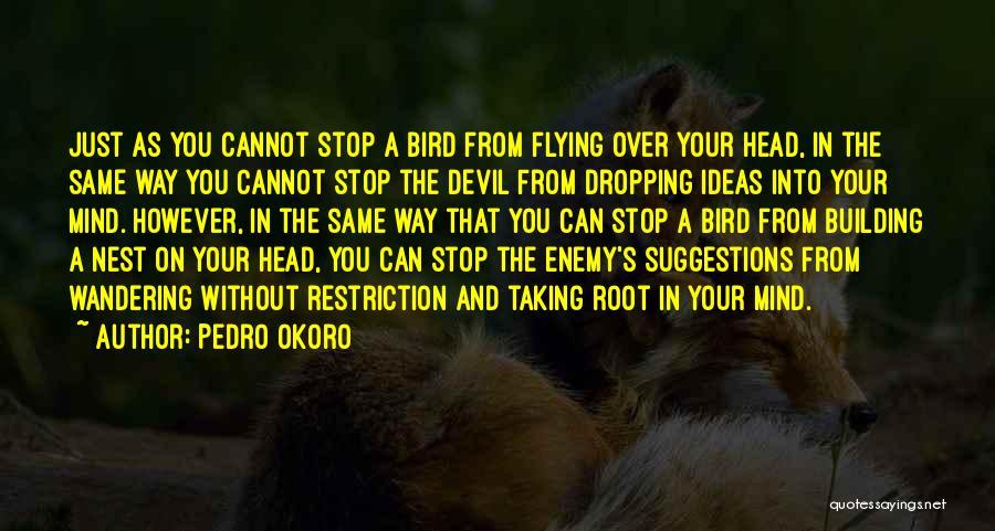 Pedro Okoro Quotes 713275