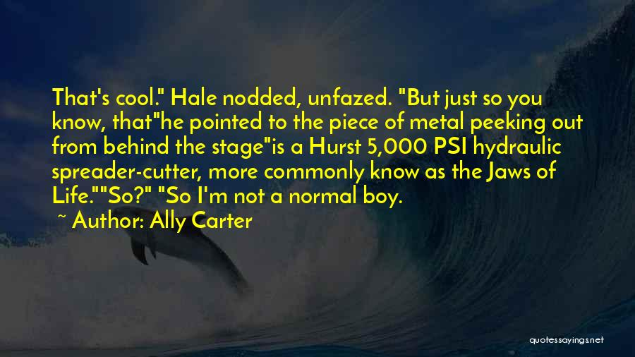 Peeking Out Quotes By Ally Carter