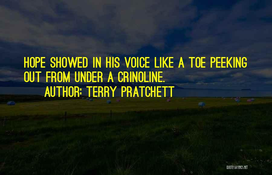 Peeking Out Quotes By Terry Pratchett