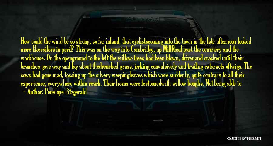 Penelope Fitzgerald Quotes 2069600