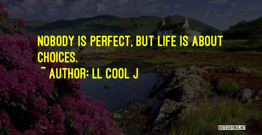 Perfect Life Quotes By LL Cool J