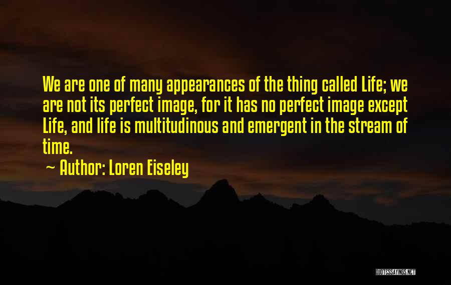 Perfect Life Quotes By Loren Eiseley