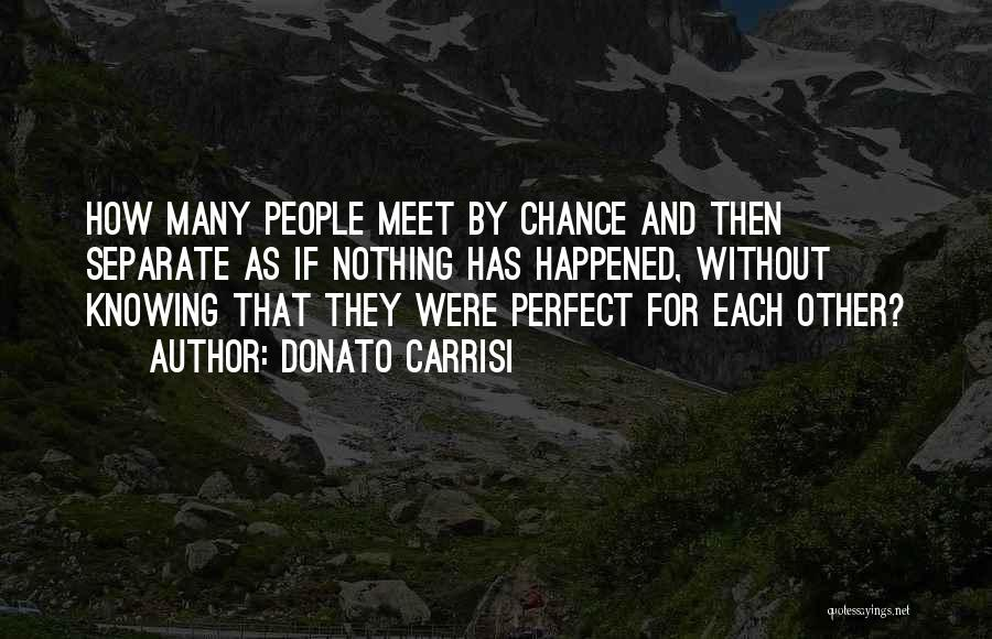Perfect Love Quotes By Donato Carrisi