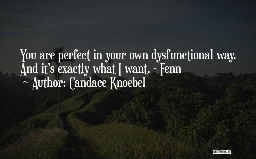 Perfect Love Story Quotes By Candace Knoebel