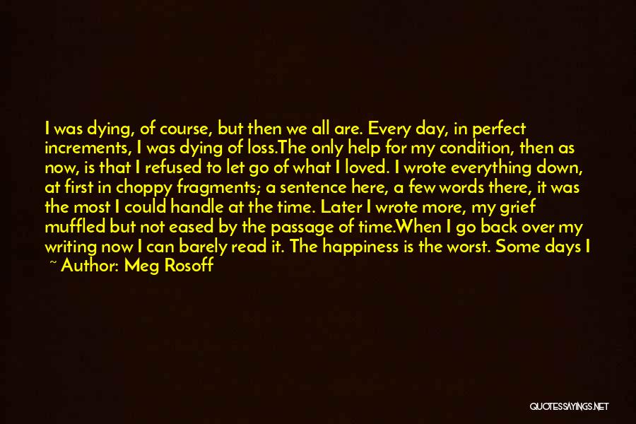 Perfect Time For Everything Quotes By Meg Rosoff