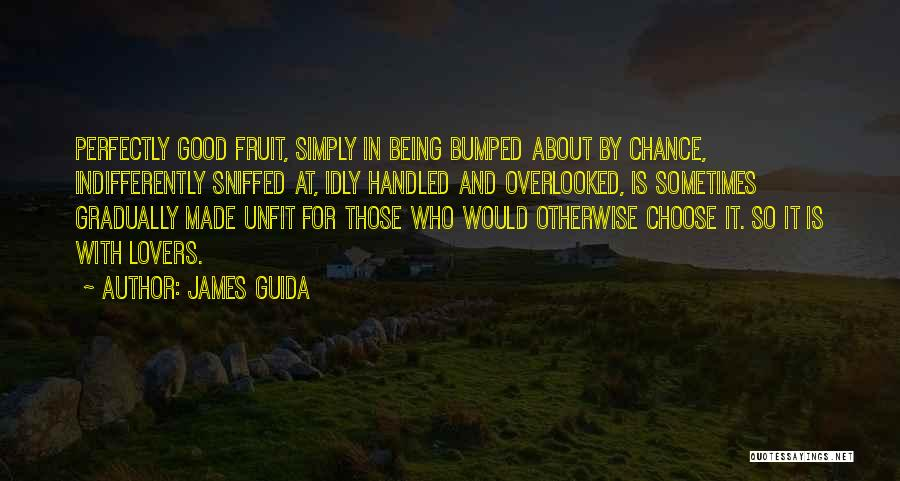 Perfectly Made Quotes By James Guida