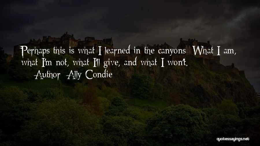 Perhaps Quotes By Ally Condie
