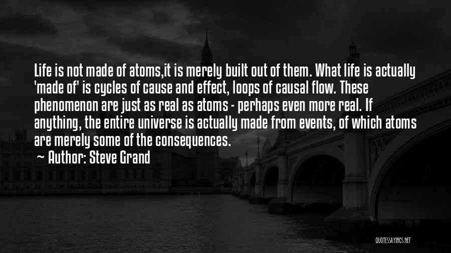 Perhaps Quotes By Steve Grand